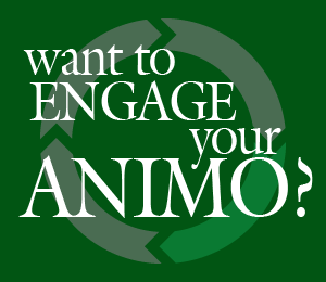 Engage your Animo!